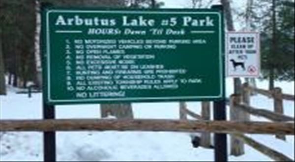 Arbutus Lake No 5