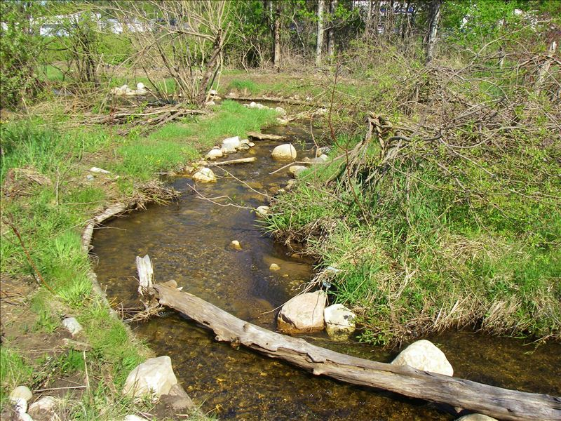Kid's Creek following streambank restoration