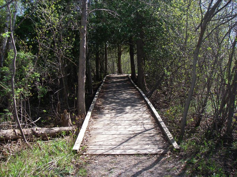 Kid's Creek Park boardwalk